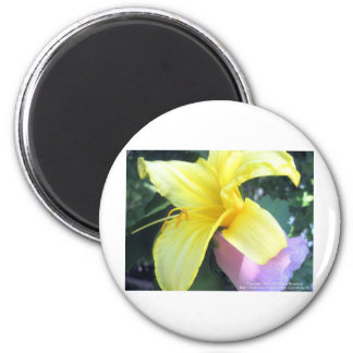 Yellow Lily 2 Inch Round Magnet