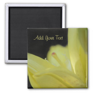 Yellow Lily by Shirley Taylor Magnet