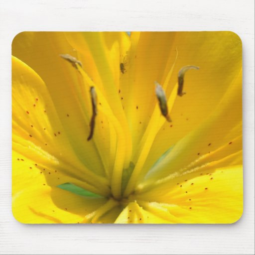 Yellow Lily Mousepads
