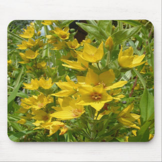 Yellow Loosestrife Mousemat Mouse Pad