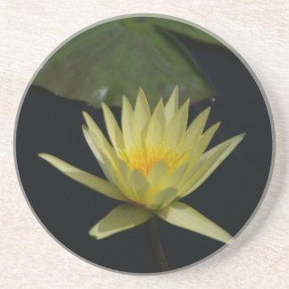 Yellow Lotus Waterlily Coaster