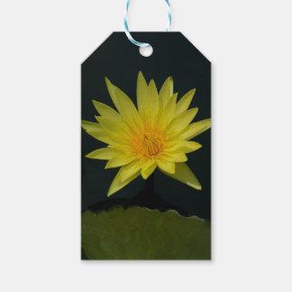 Yellow Lotus Waterlily Gift Tags