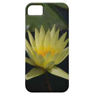 Yellow Lotus Waterlily iPhone 5 Cases