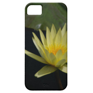 Yellow Lotus Waterlily iPhone 5 Cover
