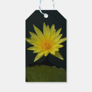 Yellow Lotus Waterlily Pack Of Gift Tags