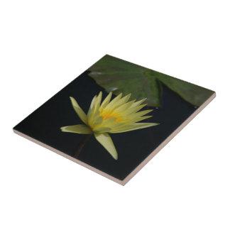 Yellow Lotus Waterlily Tile
