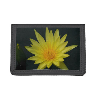 Yellow Lotus Waterlily Tri-fold Wallet