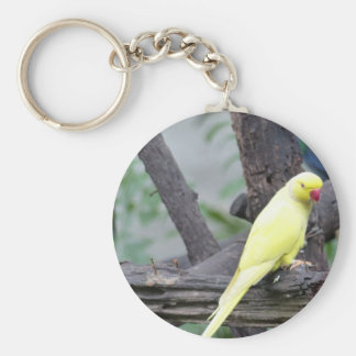 Yellow Lutino Ring Necked Parakeet in a tree Basic Round Button Keychain