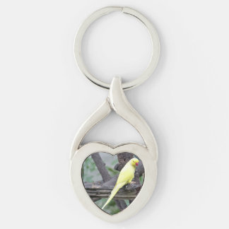 Yellow Lutino Ring Necked Parakeet in a tree Silver-Colored Twisted Heart Keychain