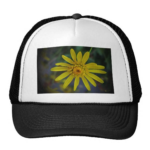 Yellow Magic Trucker Hat