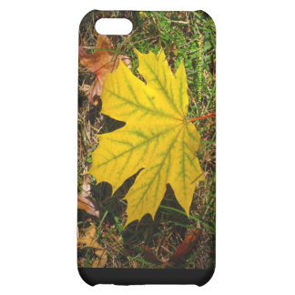 Yellow Maple Leaf Case For iPhone 5C