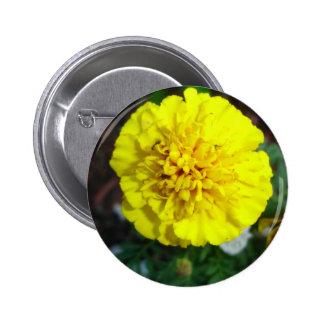 Yellow Marigold Button