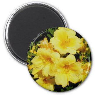Yellow Mini Lilies Magnet