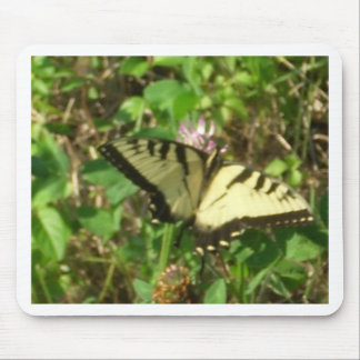 Yellow Monarch butterfly picture up close Mouse Pad