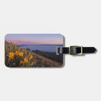 Yellow Mules Ear Flowers at Sunset Luggage Tag