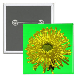 Yellow Mum Square Button