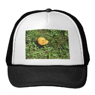 Yellow mushroom on a green meadow trucker hat