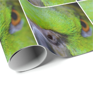 Yellow-Naped Amazon Parrot by Shirley Taylor Wrapping Paper