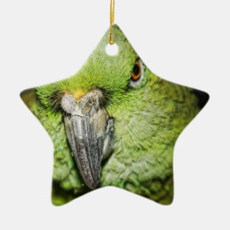 Yellow-Naped Amazon Parrot Ceramic Ornament