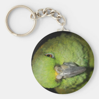 Yellow-Naped Amazon Parrot Keychain