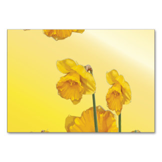 Yellow Narcissus Daffodil Retro Vintage Table Cards