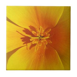 yellow of autumn tile