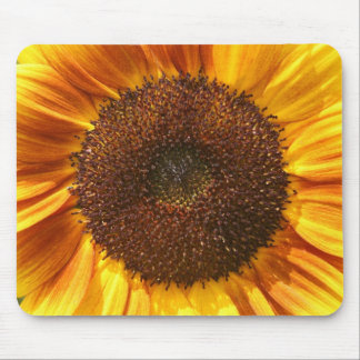 Yellow, Orange, and Brown Sunflower Mouse Pad