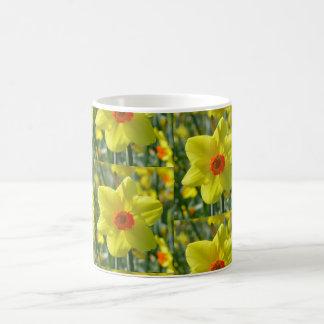 Yellow orange Daffodils 01.0.2.p Coffee Mug
