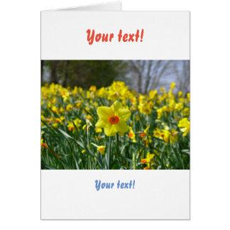 Yellow orange Daffodils 01.0.2.T Card