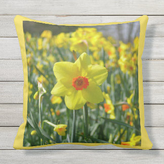 Yellow orange Daffodils 01.0.2.y Outdoor Pillow