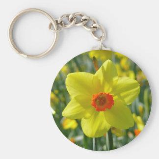 Yellow orange Daffodils 01.0 Basic Round Button Keychain