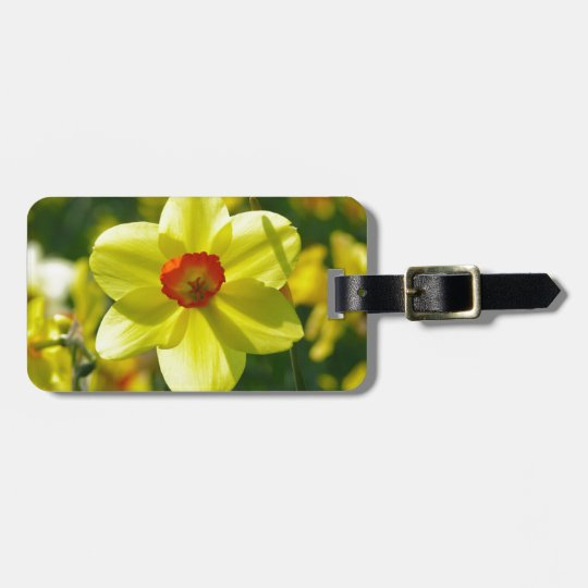 Yellow orange Daffodils 02.1g Bag Tag