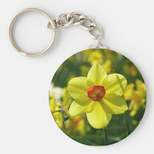 Yellow orange Daffodils 02.1g Basic Round Button Keychain