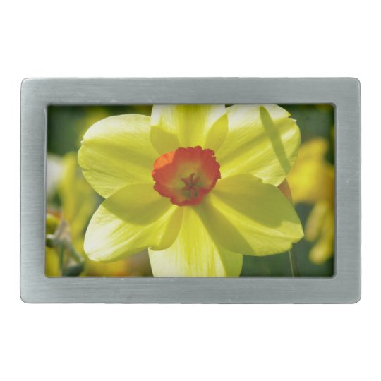 Yellow orange Daffodils 02.1g Belt Buckle