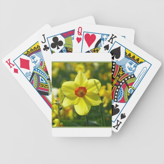 Yellow orange Daffodils 02.1g Bicycle Playing Cards