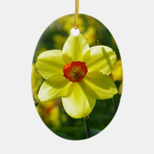 Yellow orange Daffodils 02.1g Ceramic Oval Ornament