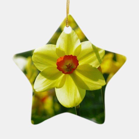 Yellow orange Daffodils 02.1g Ceramic Star Ornament