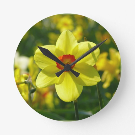 Yellow orange Daffodils 02.1g Clock