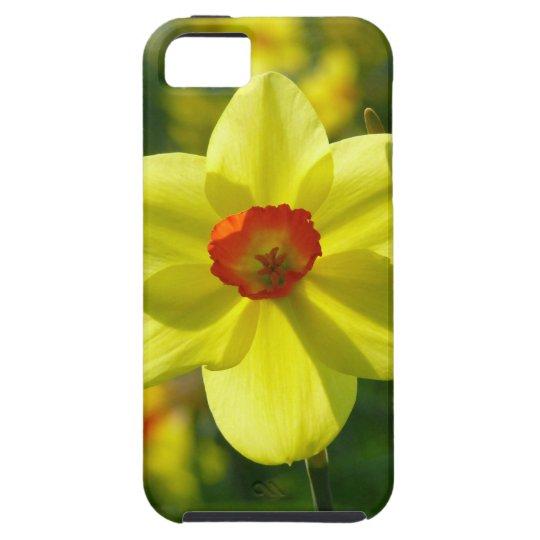 Yellow orange Daffodils 02.1g iPhone 5 Covers
