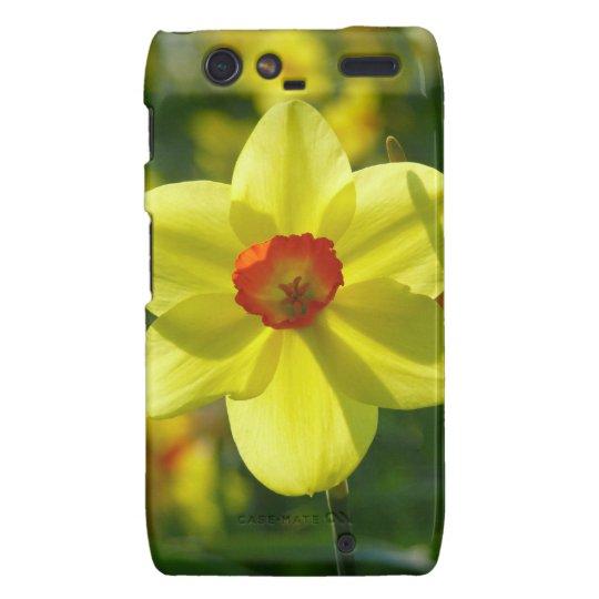 Yellow orange Daffodils 02.1g Motorola Droid RAZR Cover