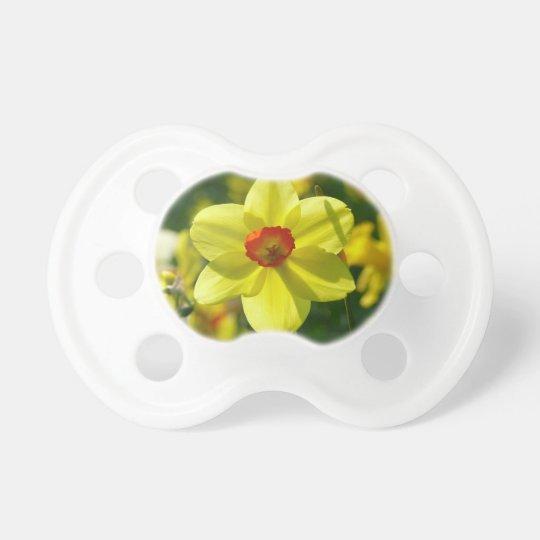 Yellow orange Daffodils 02.1g Pacifier