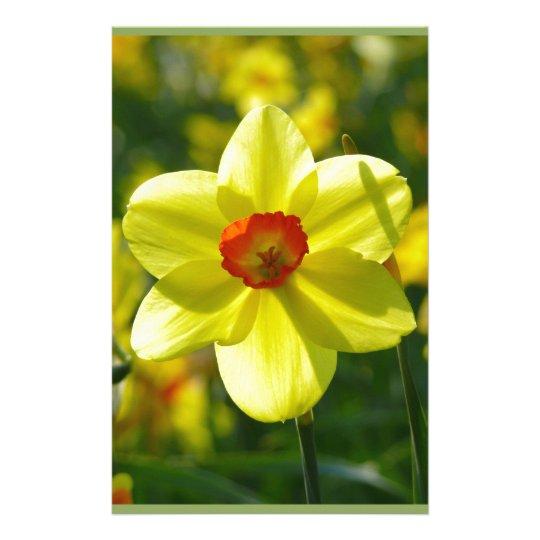 Yellow orange Daffodils 02.1g Personalized Stationery