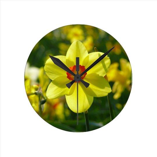 Yellow orange Daffodils 02.1g Round Clock