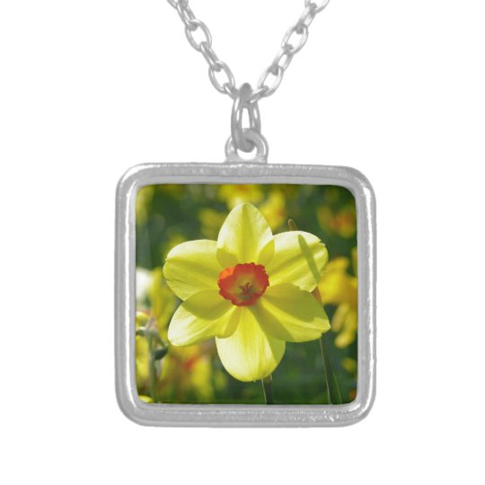 Yellow orange Daffodils 02.1g Silver Plated Necklace
