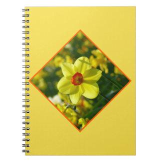 Yellow orange Daffodils 02.2.2o Spiral Note Books