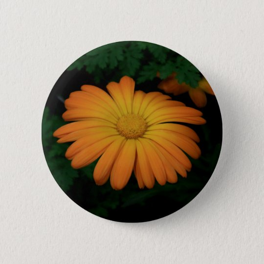 Yellow orange daisy flower 2 inch round button