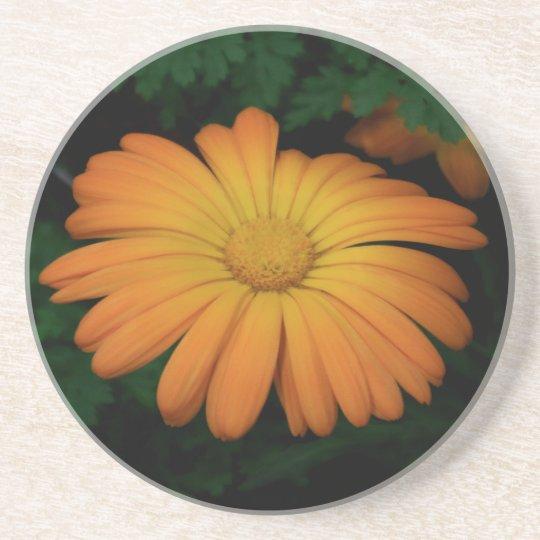 Yellow orange daisy flower coaster
