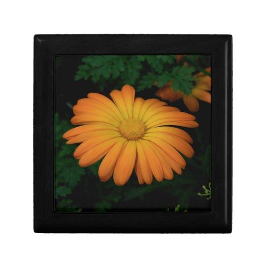 Yellow orange daisy flower gift box