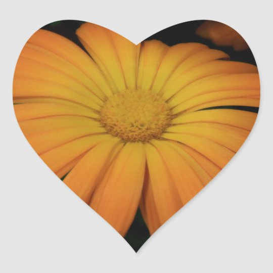 Yellow orange daisy flower heart sticker