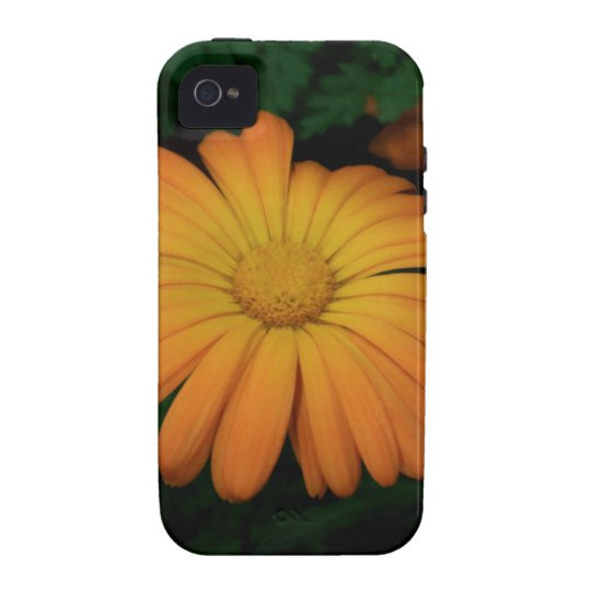 Yellow orange daisy flower iPhone 4/4S case